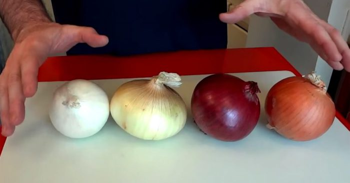 Most People Cook Onions Wrong, Chef Explains What To Do With Each One