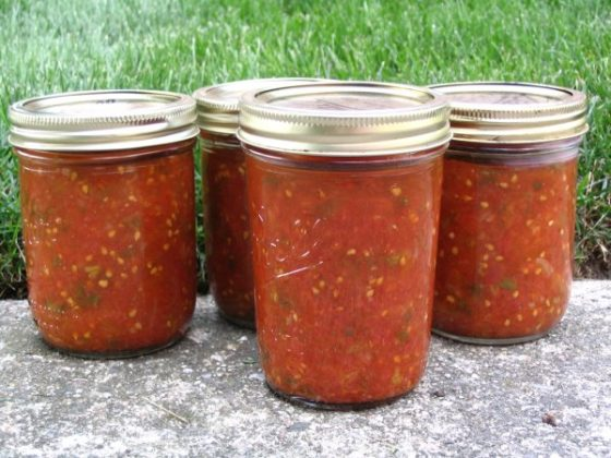REALLY, REALLY GOOD SALSA And easy! NO COOKING!